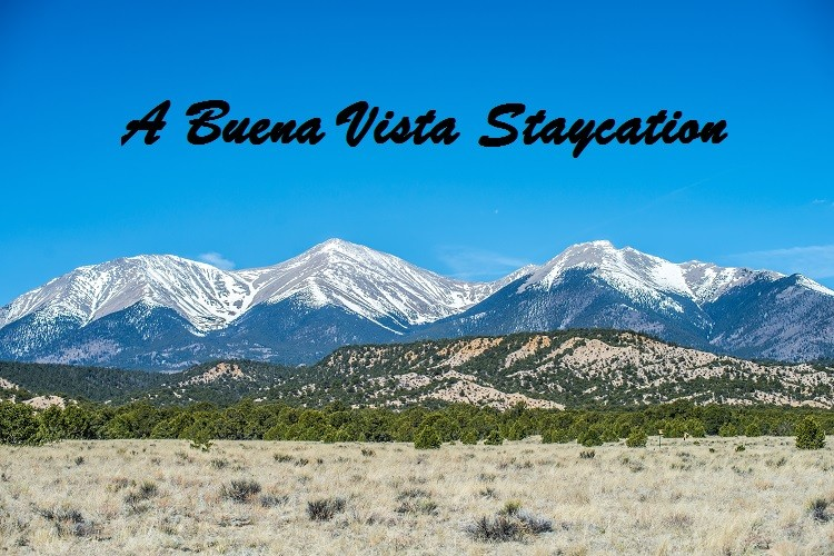 A Buena Vista Staycation